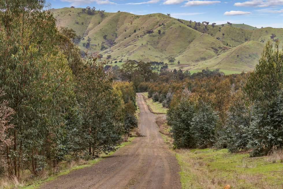 Fourth view of Homely horticulture listing, 910 King Parrot Creek Road, Strath Creek VIC 3658