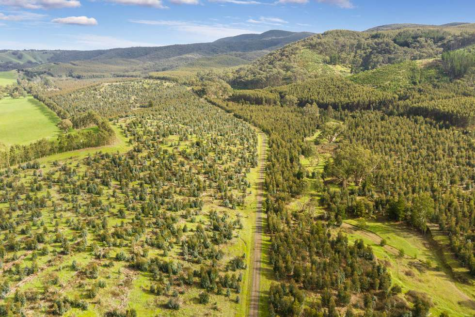 Fifth view of Homely horticulture listing, 910 King Parrot Creek Road, Strath Creek VIC 3658