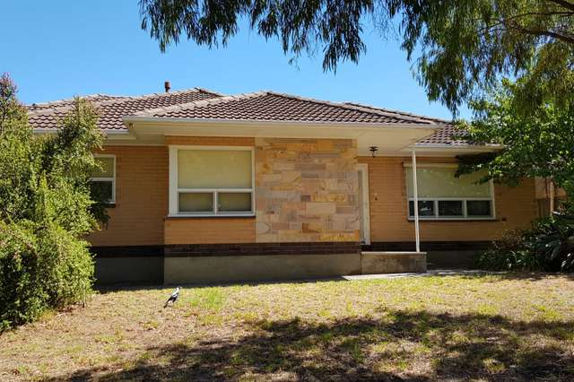 7 Hillside Drive, Campbelltown SA 5074