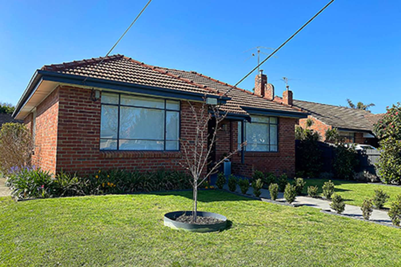 Main view of Homely house listing, 3 Shipston Road, Cheltenham VIC 3192