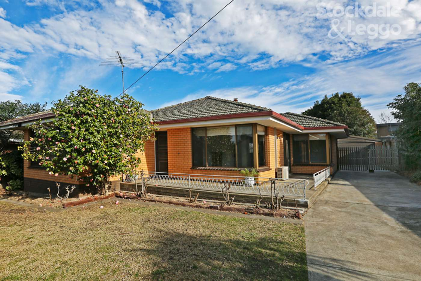 Main view of Homely house listing, 22 Fairfield Avenue, Belmont VIC 3216