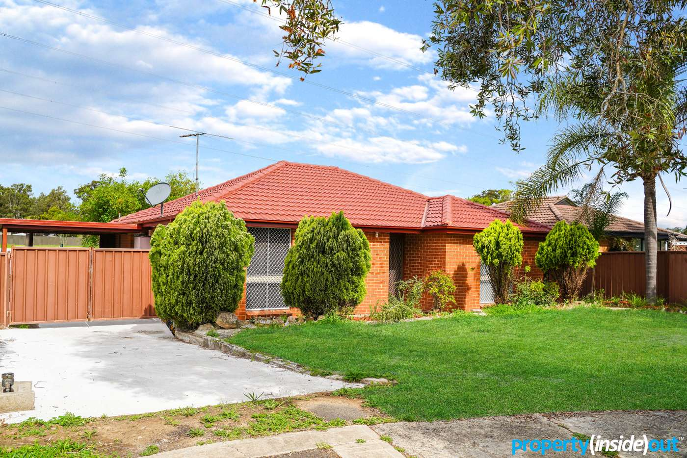 Main view of Homely house listing, 8 Clem Place, Shalvey NSW 2770