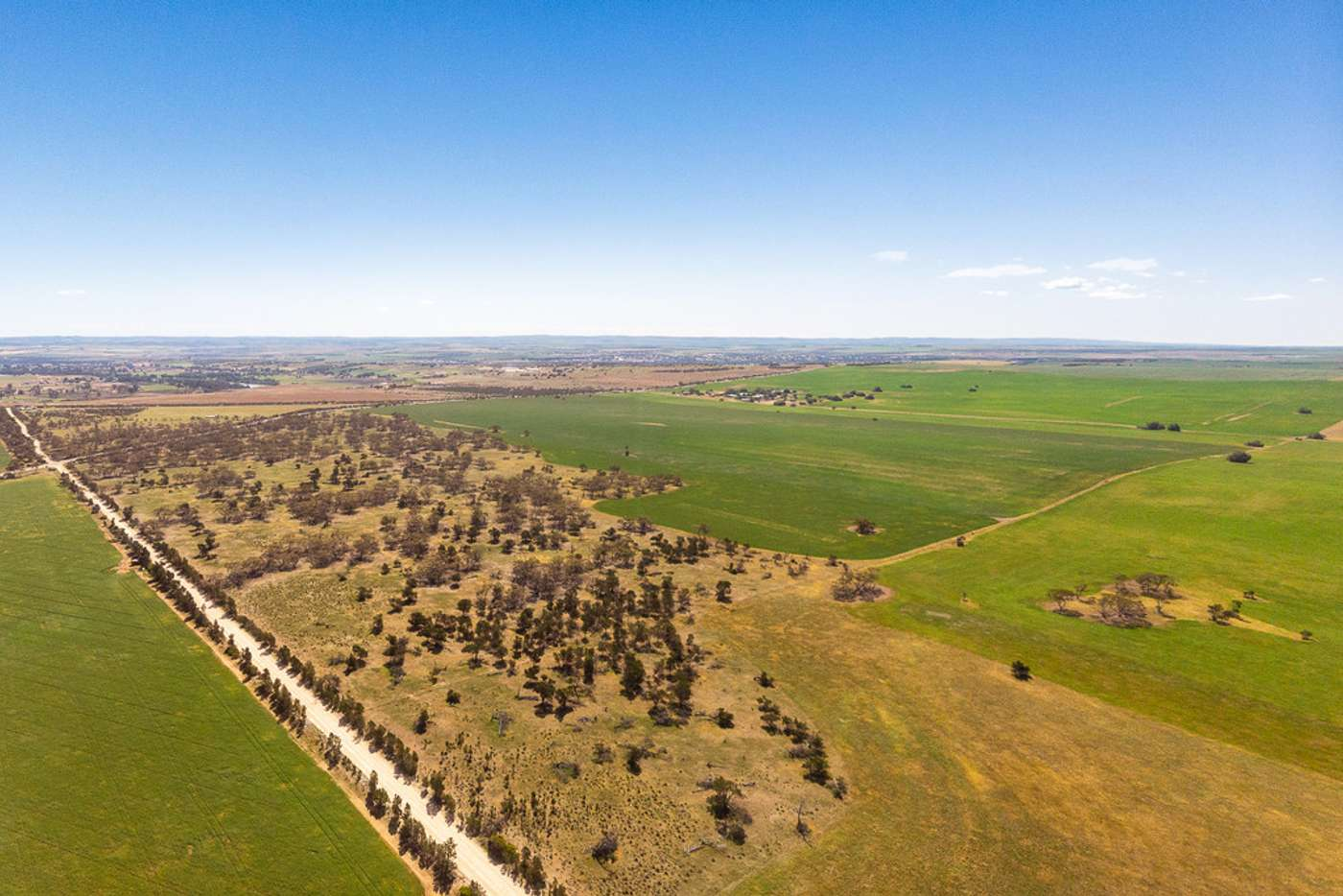 Sixth view of Homely cropping listing, 8 Burdett Rd, Ponde SA 5238