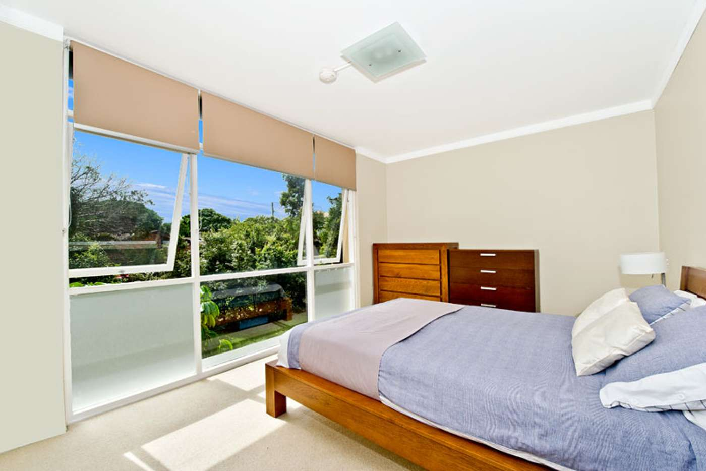 Main view of Homely apartment listing, 8/65 Wentworth Street, Randwick NSW 2031