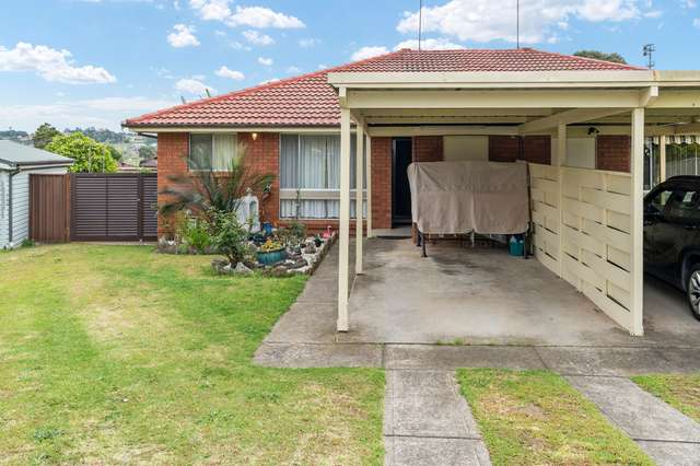 5 Hall Place, Minto NSW 2566