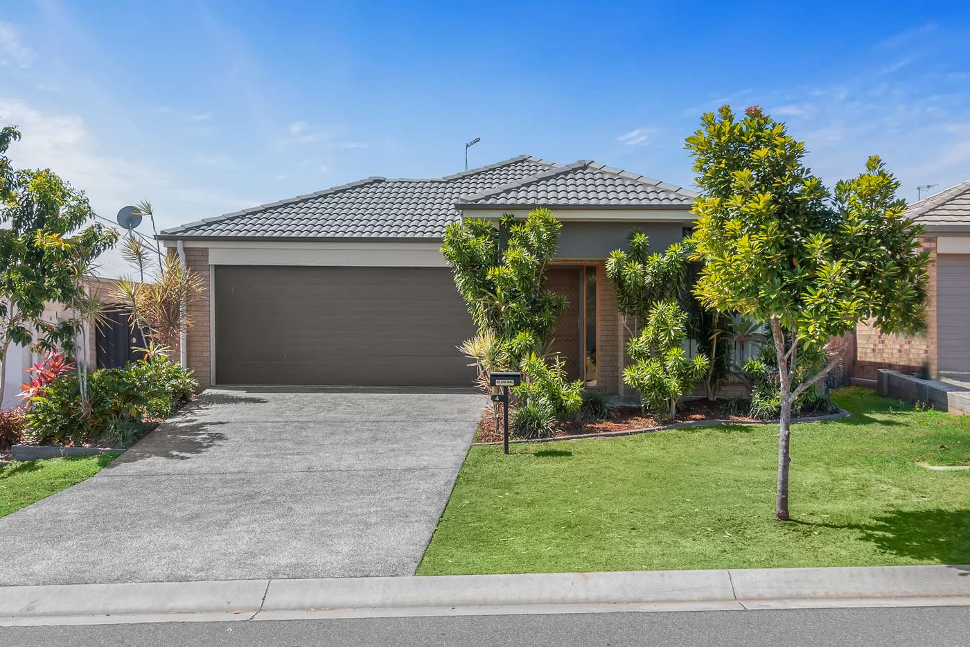 Main view of Homely house listing, 4 Bayleaf Street, Griffin QLD 4503