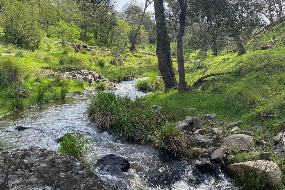 Second view of Homely acreageSemiRural listing, 3853 JINGELLIC ROAD, Lankeys Creek NSW 2644
