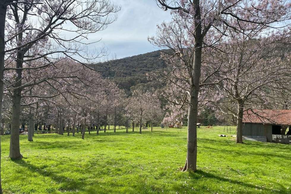 Third view of Homely acreageSemiRural listing, 3853 JINGELLIC ROAD, Lankeys Creek NSW 2644
