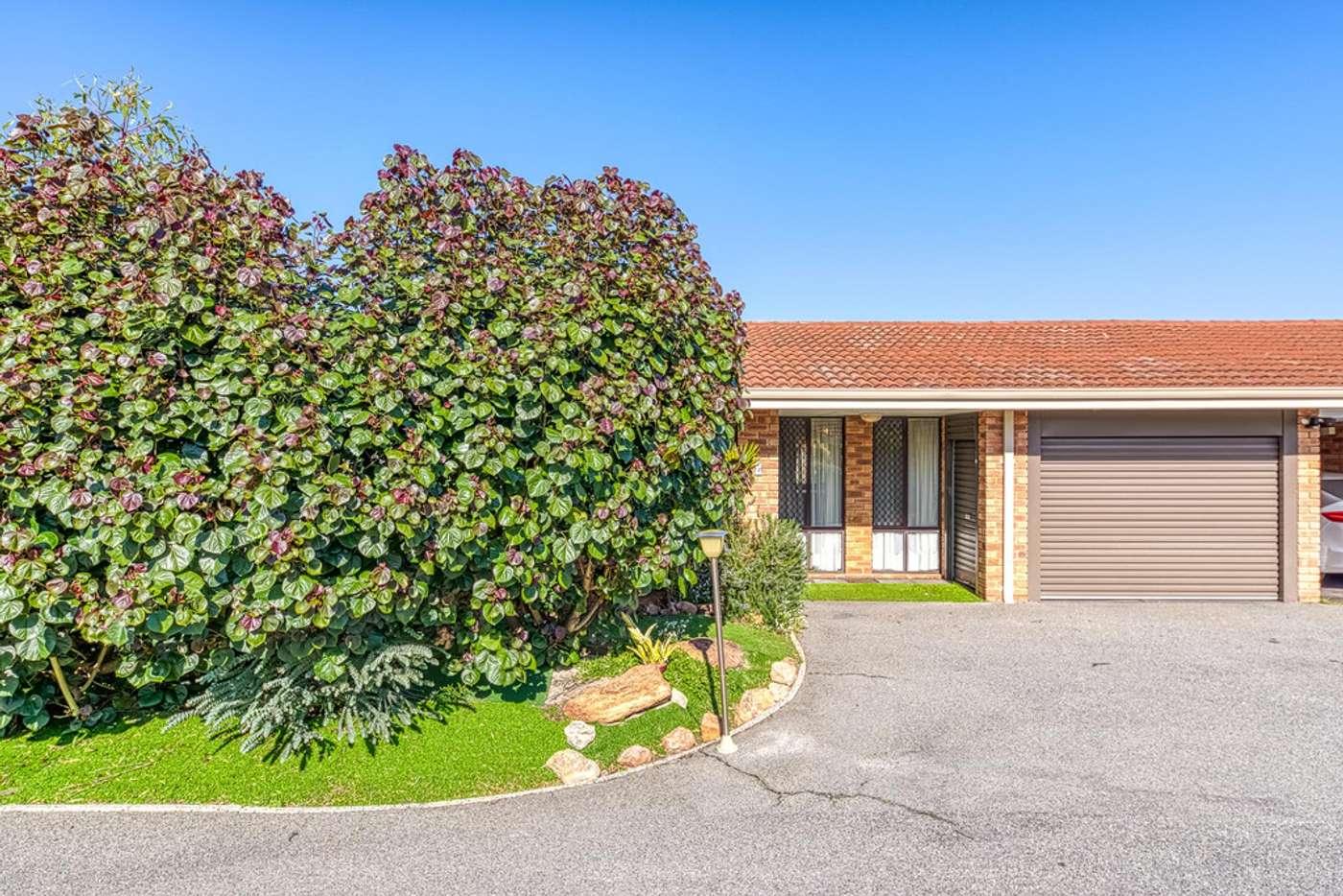 Main view of Homely villa listing, 5/13 Eudanda Place, Cannington WA 6107