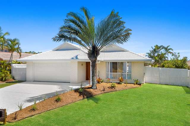 3 Silkyoak Court, Burleigh Waters QLD 4220