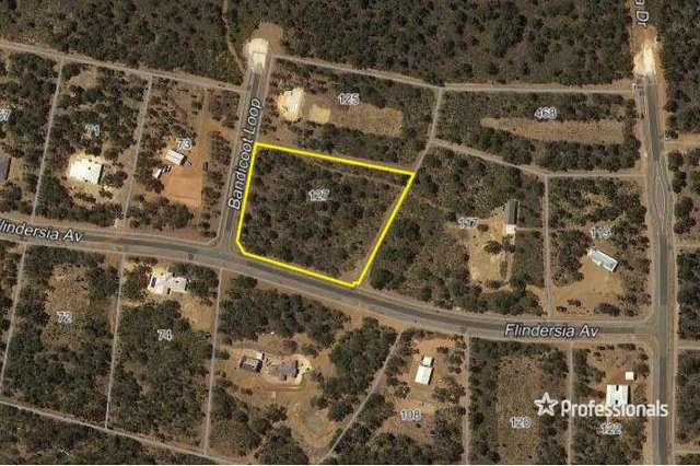 LOT 134/127 Bandicoot Loop, Brigadoon WA 6069