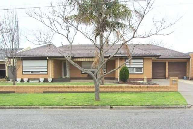 3 Diane Avenue, Newton SA 5074