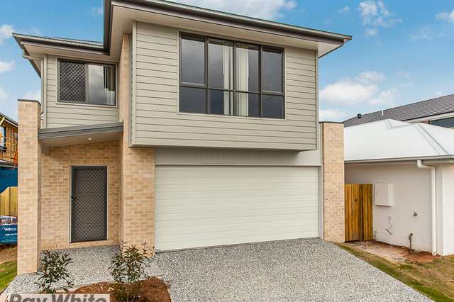 3 Nash Court, Mango Hill QLD 4509