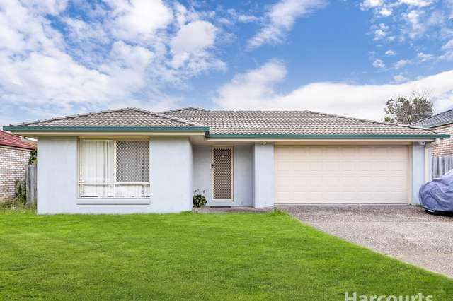 19 Blue Range Drive, Algester QLD 4115
