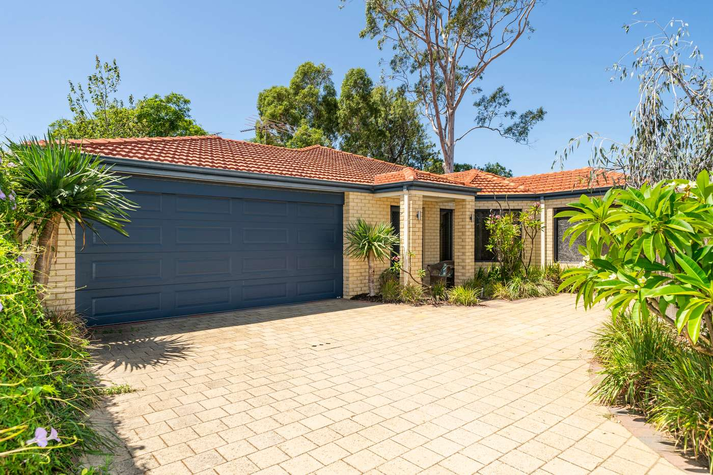 Main view of Homely house listing, 22A Butson Street, Hilton WA 6163