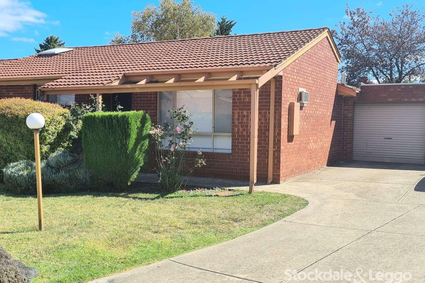 Main view of Homely unit listing, 16/117 Plenty Road, Bundoora VIC 3083