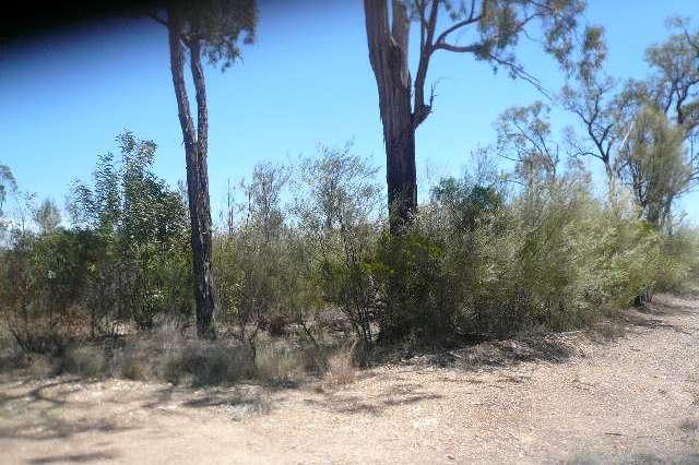 LOT 1 OLD TARA ROAD, Tara QLD 4421