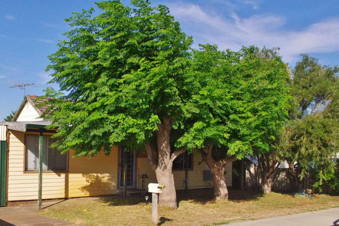 Main view of Homely house listing, 16 William Street, Rockingham WA 6168