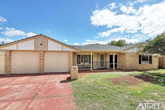 1 Beagle Place, Thornlie WA 6108