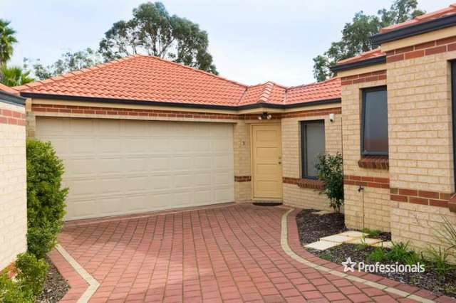 3/11 Arnold Place