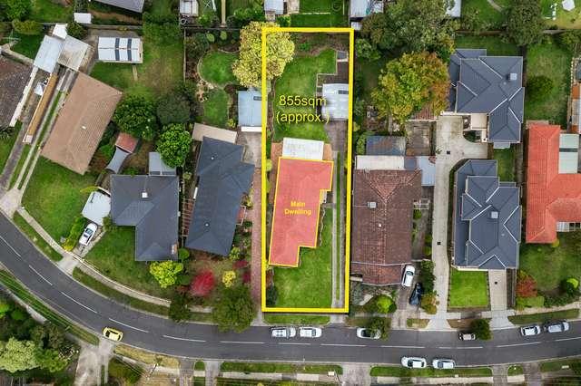 43 Pickford Street, Burwood East VIC 3151
