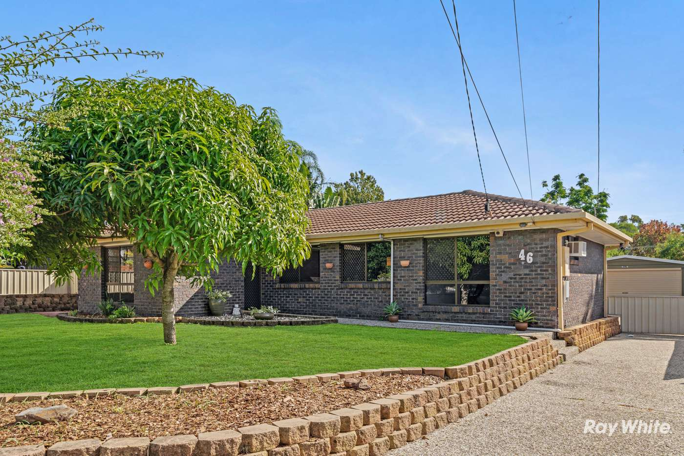 Main view of Homely house listing, 46 Mayfair Drive, Browns Plains QLD 4118