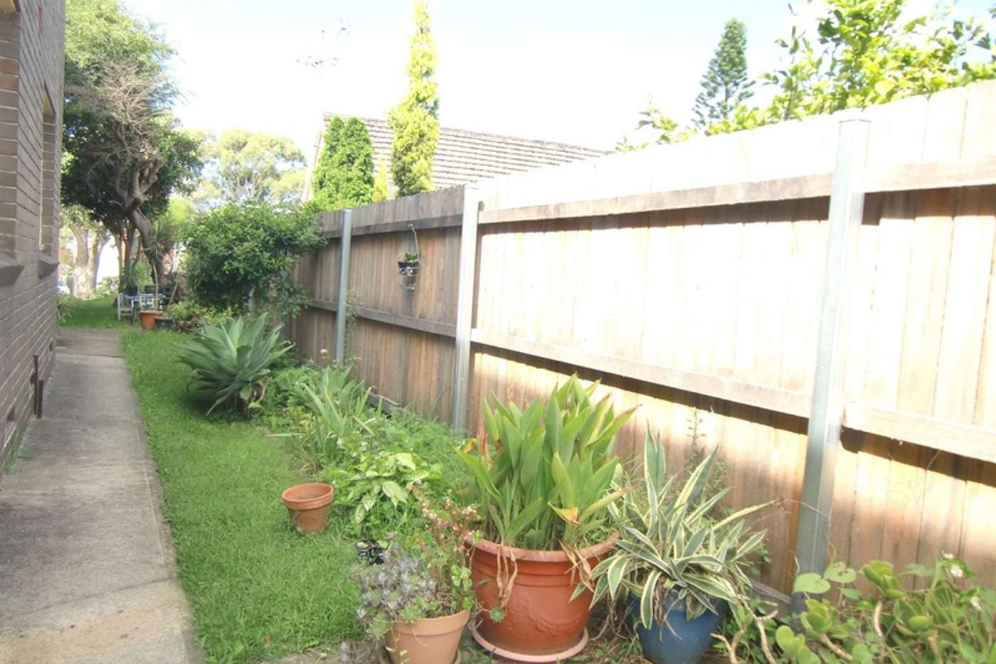Seventh view of Homely unit listing, 5/ 5 Constitution Road, Dulwich Hill NSW 2203