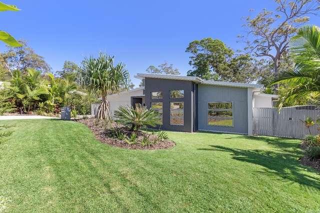 8 Dodonaea Close, Noosaville QLD 4566
