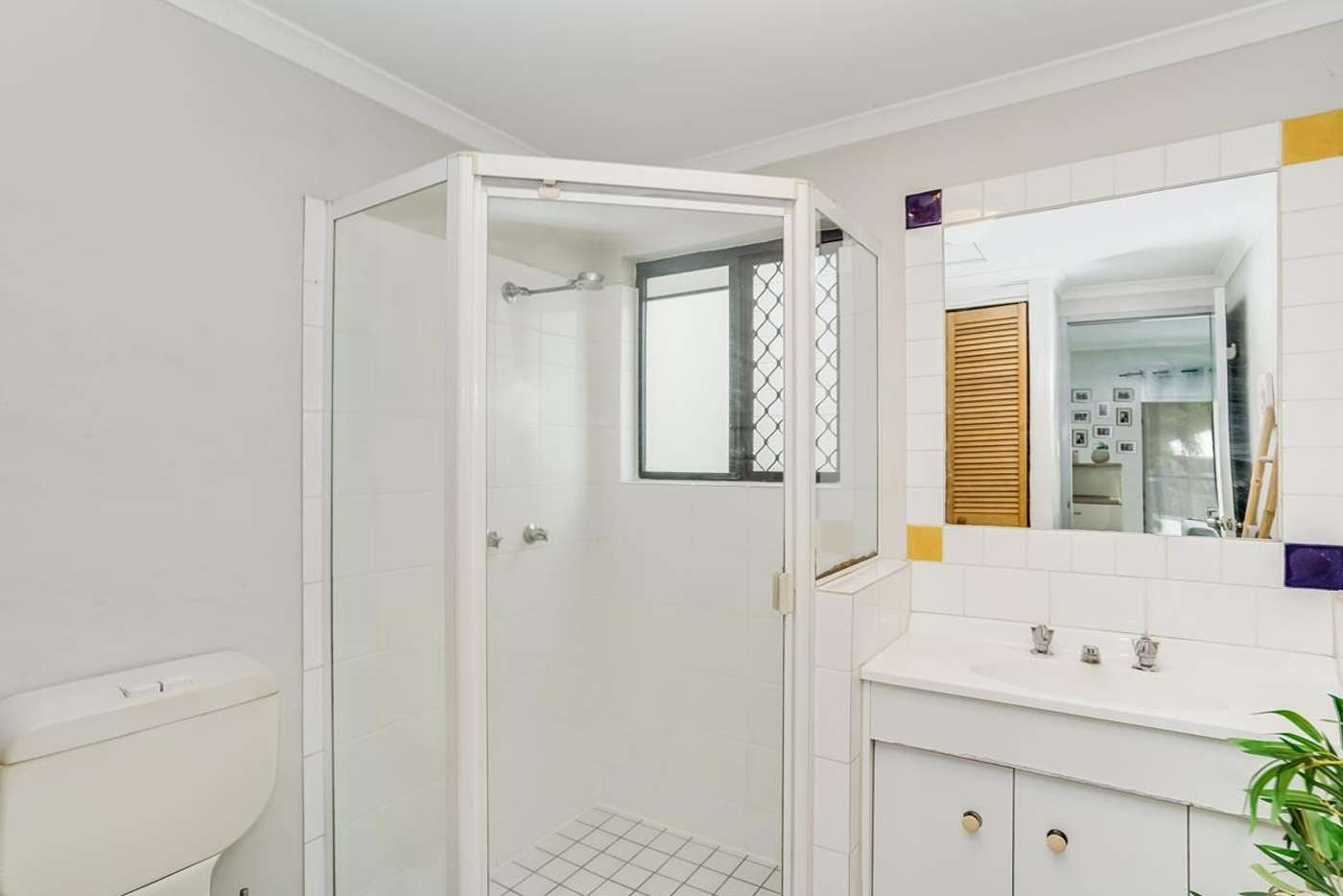 Seventh view of Homely unit listing, 4/163 Buchan Street, Bungalow QLD 4870