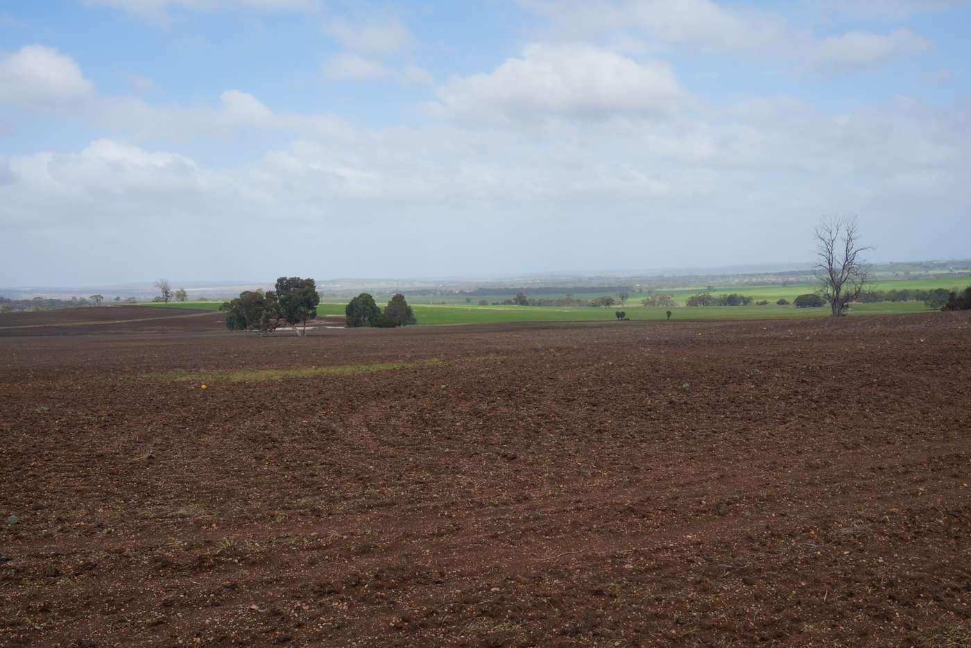 Seventh view of Homely cropping listing, LOT 802 Westdale Road, Beverley WA 6304
