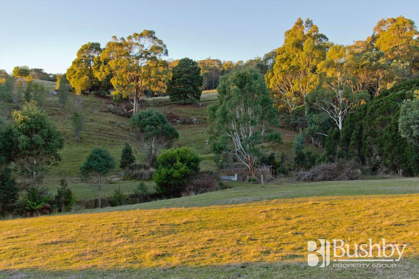 Sixth view of Homely house listing, 5 Meika Court, Swan Bay TAS 7252