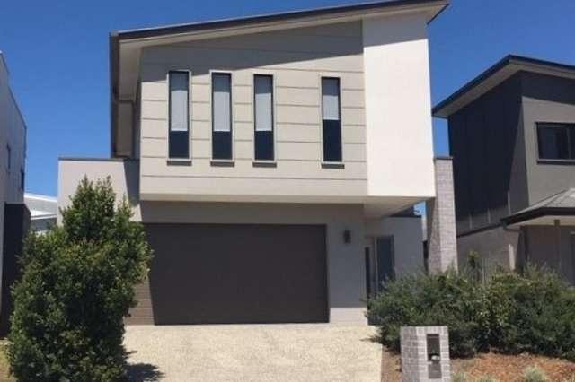 26 Olearia Street, Coomera QLD 4209