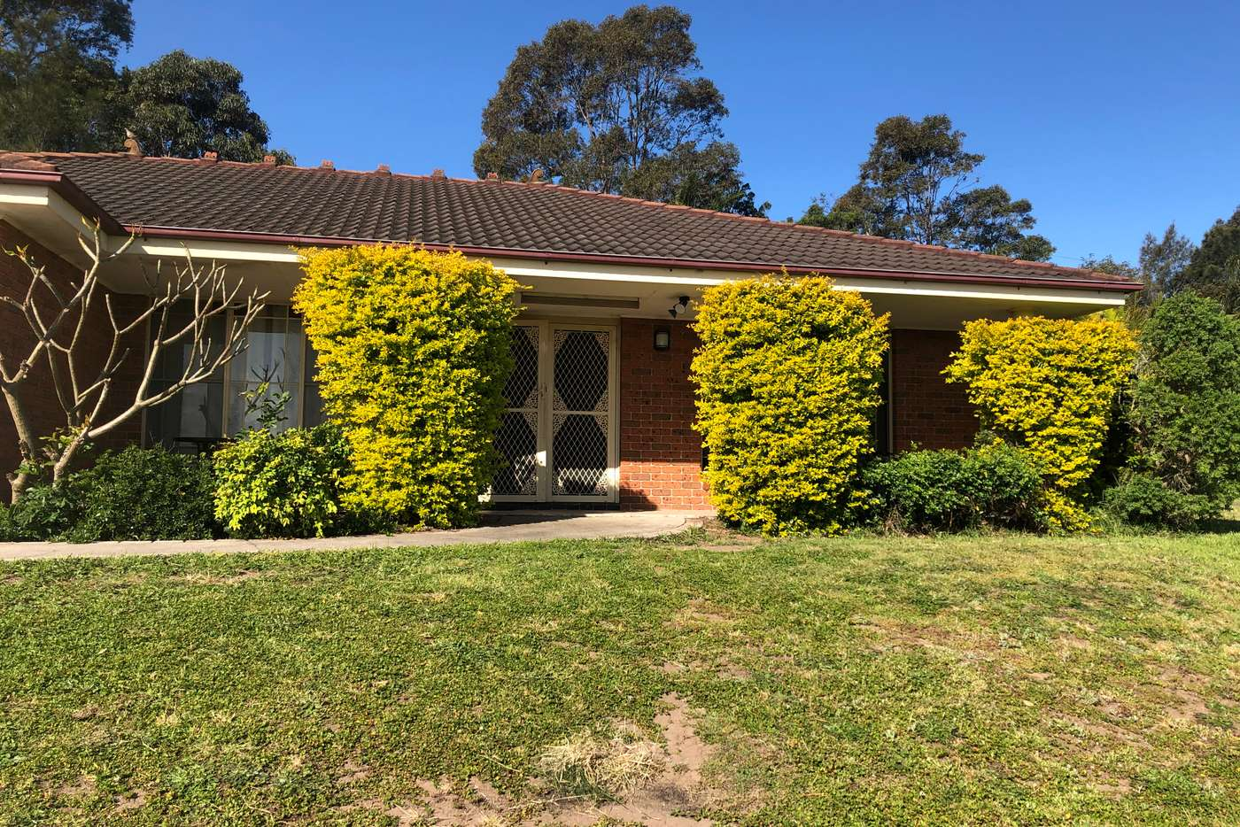 Main view of Homely house listing, 16 O'learia Crescent, Warabrook NSW 2304