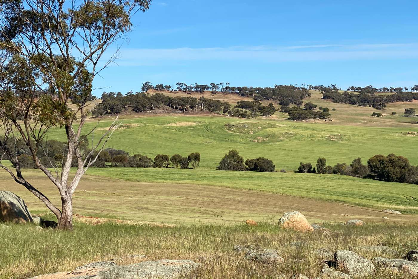 Seventh view of Homely lifestyle listing, LOT 2367 York Willaims Rd, Beverley WA 6304