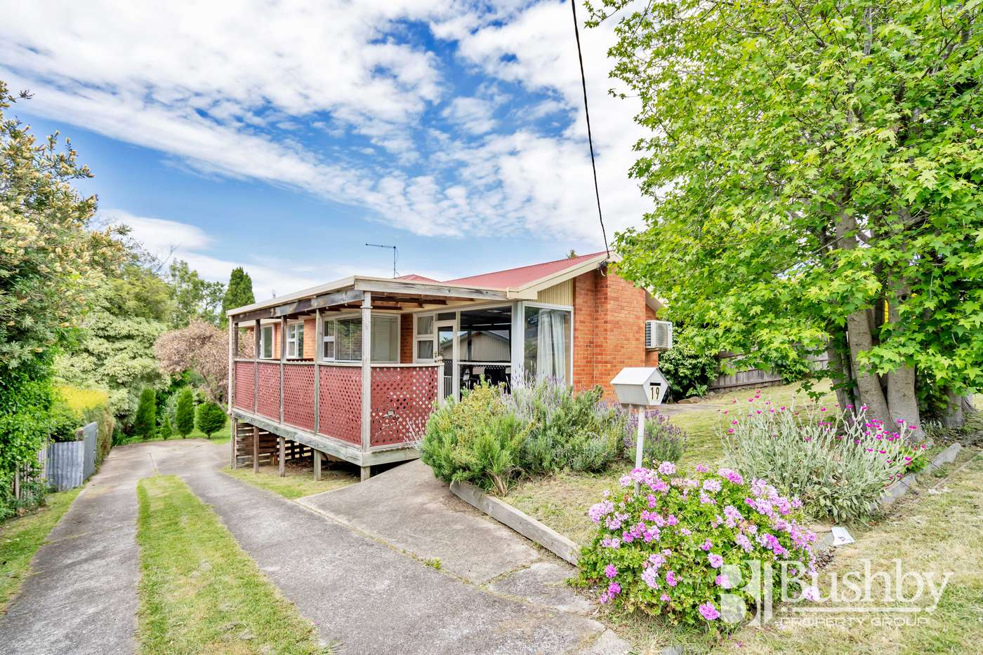 Main view of Homely house listing, 19 Dandenong Road, Trevallyn TAS 7250