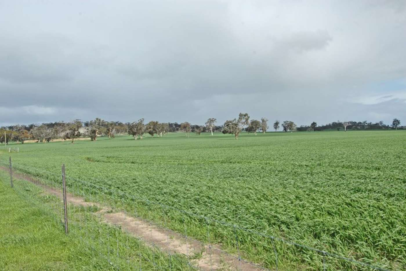 Main view of Homely mixedFarming listing, LOT 625 Kokeby West Road, Beverley WA 6304