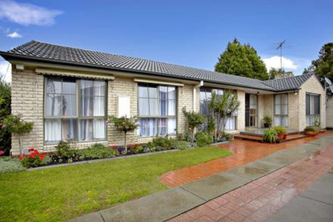 Main view of Homely house listing, 17 Peters Drive, Cheltenham VIC 3192