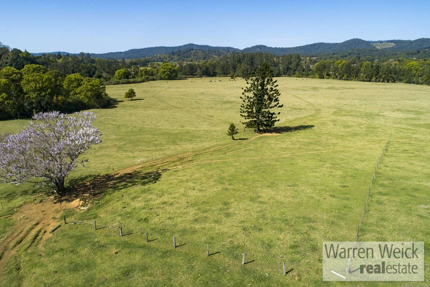 Fifth view of Homely other listing, 102 North Bank  Road, Bellingen NSW 2454