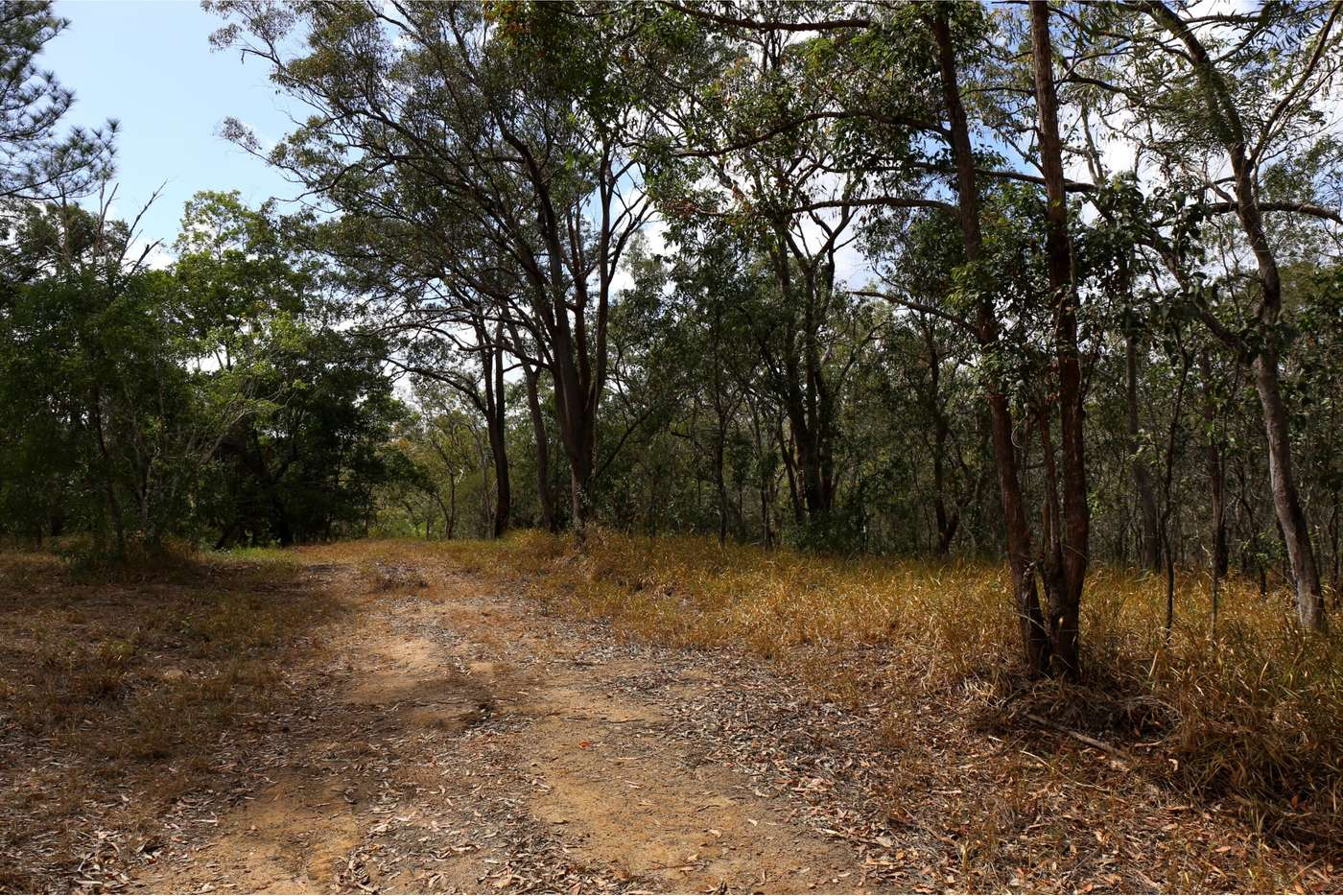 Seventh view of Homely residentialLand listing, LOT 11/SP154474 Copland Road, Koah QLD 4881