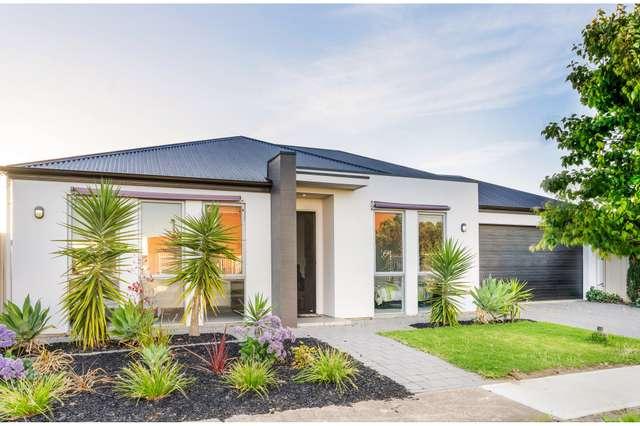 16 Malcolm Street, Flinders Park SA 5025