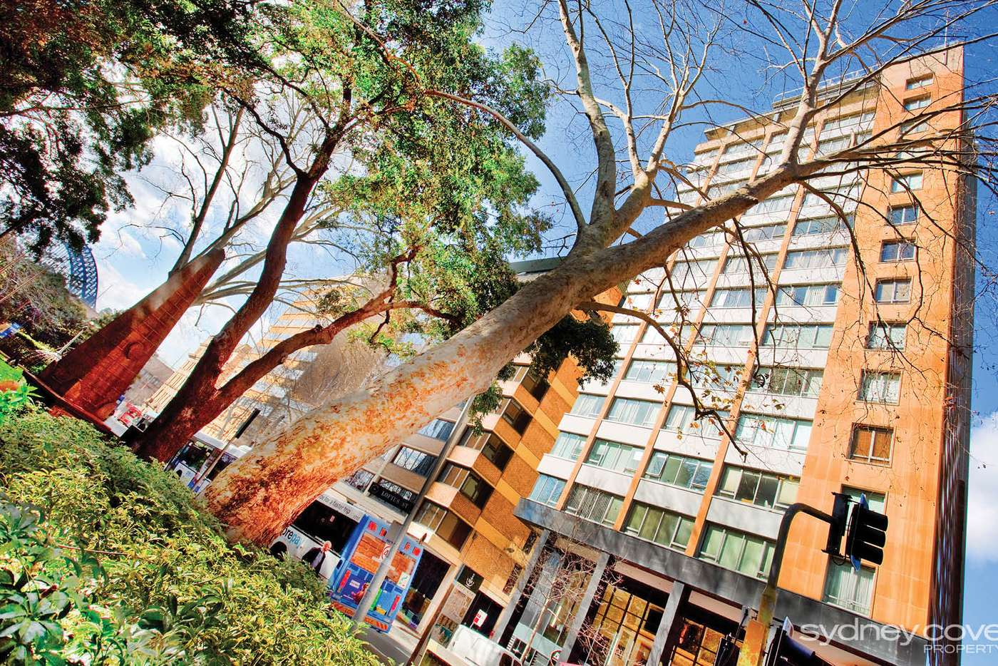 Sixth view of Homely apartment listing, 38 Bridge St, Sydney NSW 2000