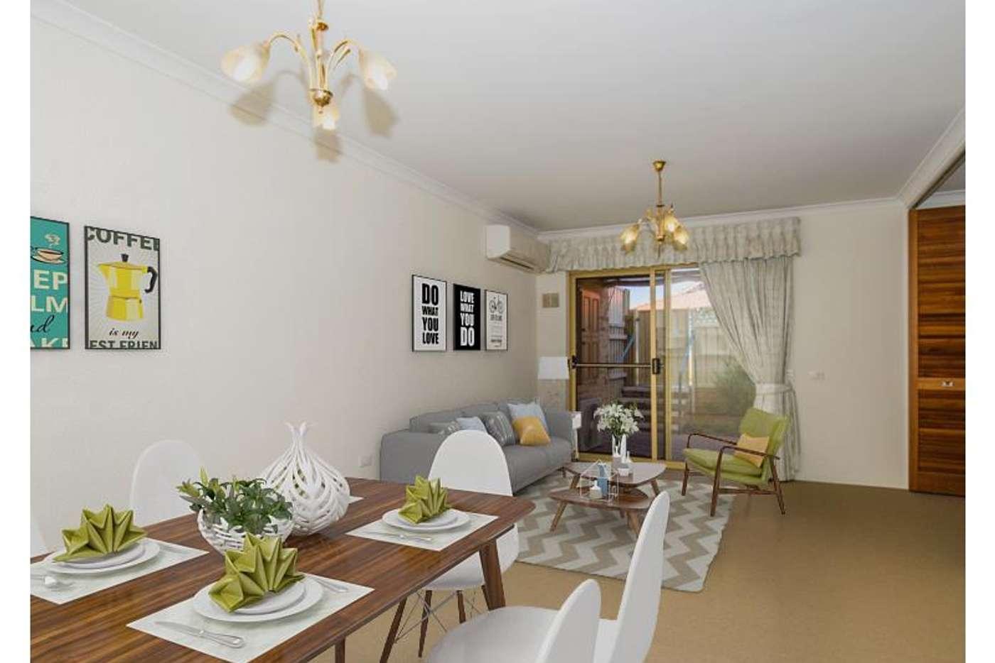 Main view of Homely retirement listing, 205/177 Dampier Avenue, Kallaroo WA 6025