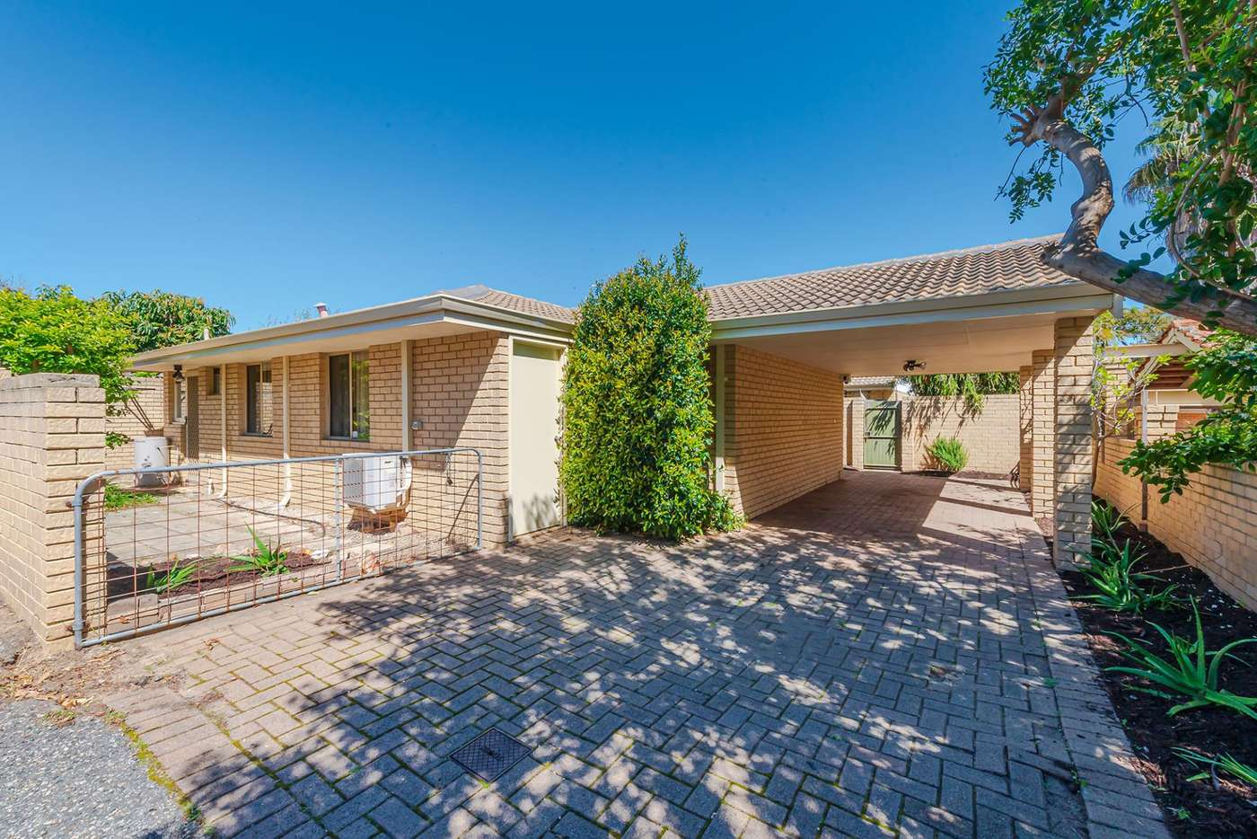 Main view of Homely villa listing, 8 Alto Lane, North Perth WA 6006