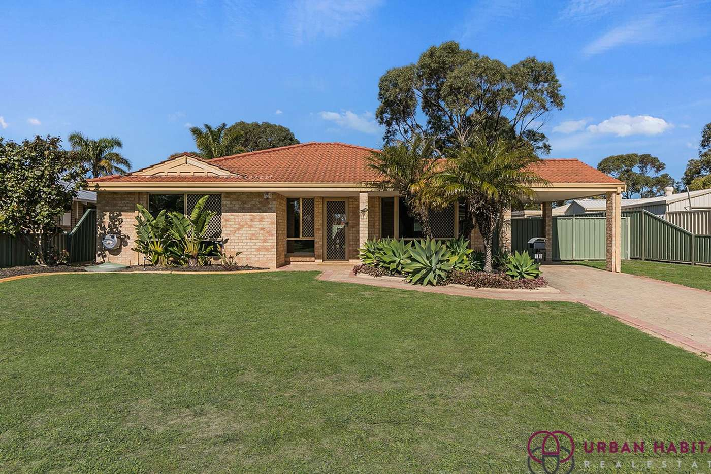 Main view of Homely house listing, 16 Glencoe Place, Cooloongup WA 6168
