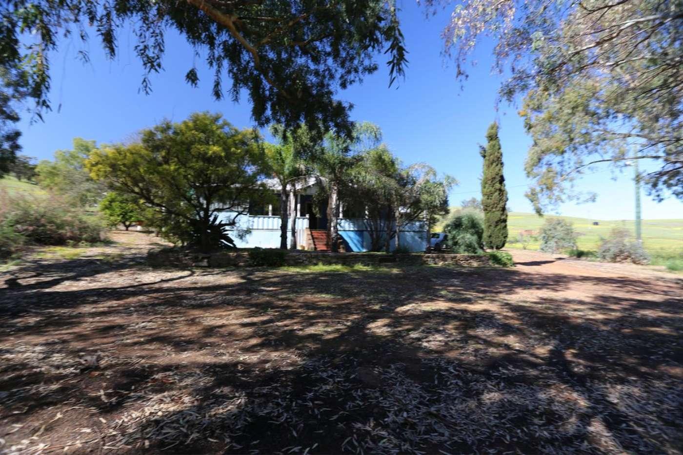 Main view of Homely house listing, 150 Bindi Bindi, Toodyay Road, Toodyay WA 6566
