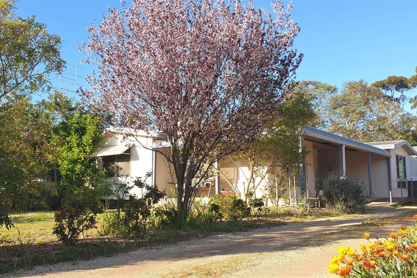 Main view of Homely house listing, 21A Melbourne Street, Moora WA 6510