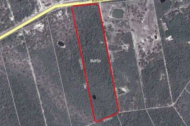 2206 Round Hill Road, Round Hill QLD 4677