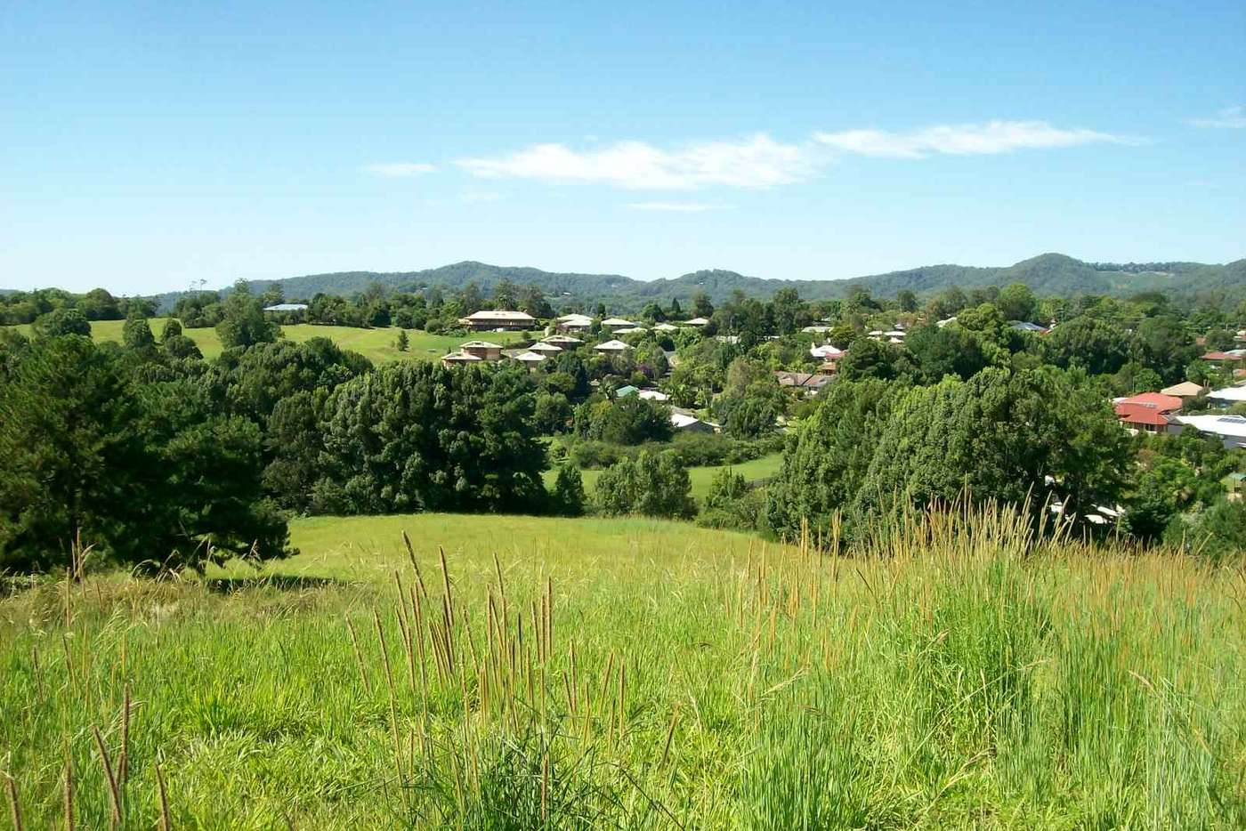 Main view of Homely residentialLand listing, 16 Ironbark Place, Bellingen NSW 2454