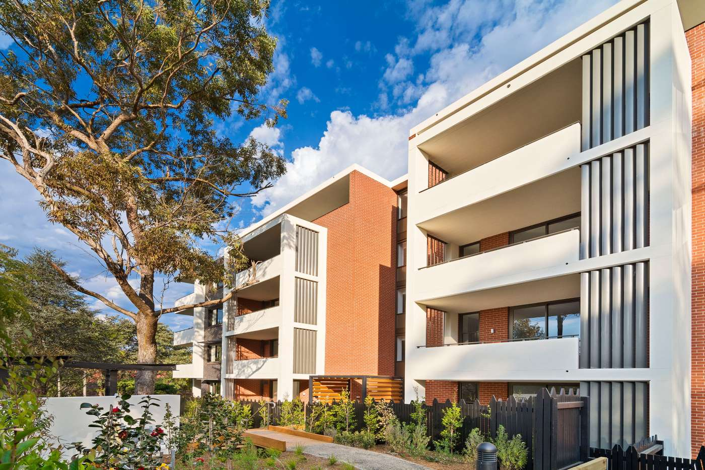 Main view of Homely unit listing, A207/11 Victoria Street, Roseville, NSW 2069