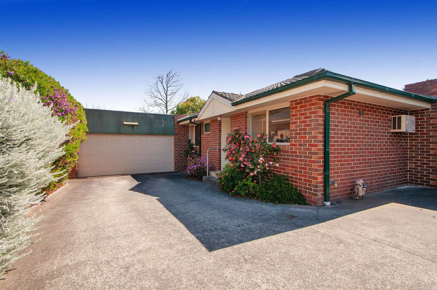 Main view of Homely unit listing, 3/204 Bayswater Road, Bayswater North, VIC 3153